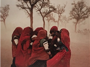 Sandstorm, India, 1983, Steve McCurry
