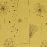 Lucienne Day: A Sense of Growth